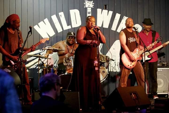 CK_Wild Wings